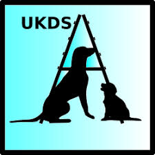 UKDS Search and Rescue